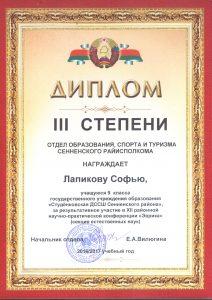 Диплом 2017 Лапикова С